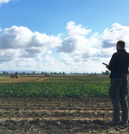 How to make the most of agricultural IoT data