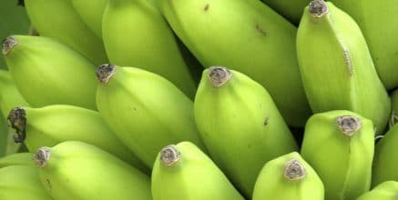 Green bananas and the Internet of Things